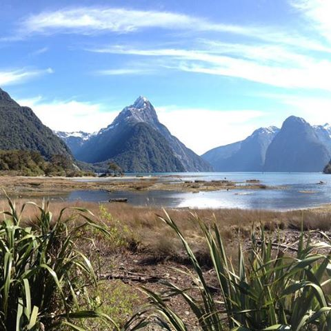 Milford Sound looking nothing short of perfect this afternoon. 📷: @andywoods57